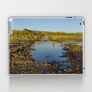 Laptop & iPad Skin